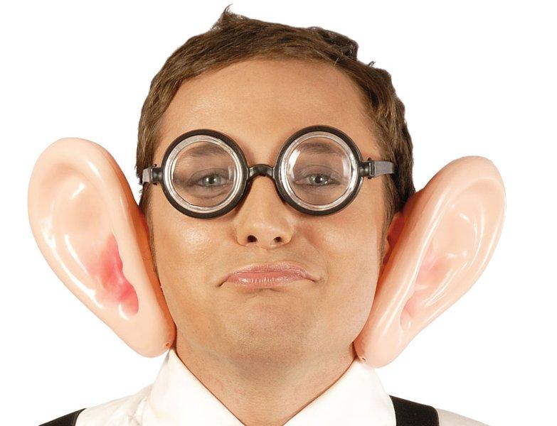 a chapter on ears essayists